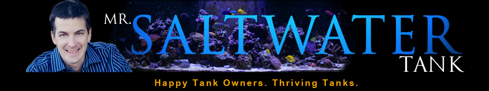 Mr-SaltWaterTank-header-FINAL